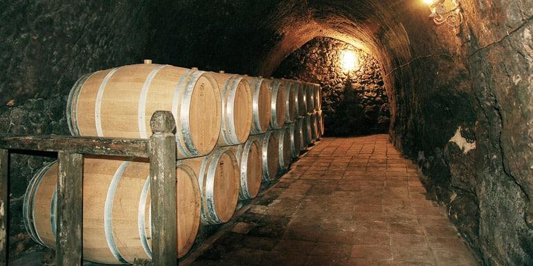 Alquila un autocar para tus rutas de vino